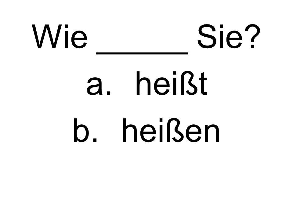 Wie _____ Sie a.heißt b.heißen