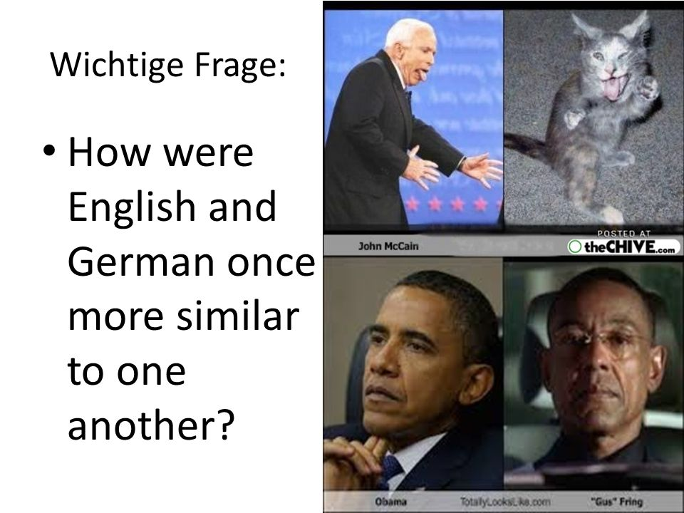 Wichtige Frage: How were English and German once more similar to one another