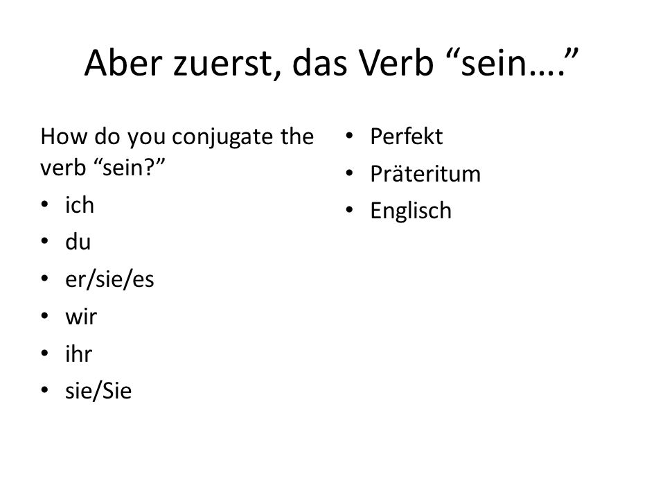 Aber zuerst, das Verb sein….How do you conjugate the verb sein.