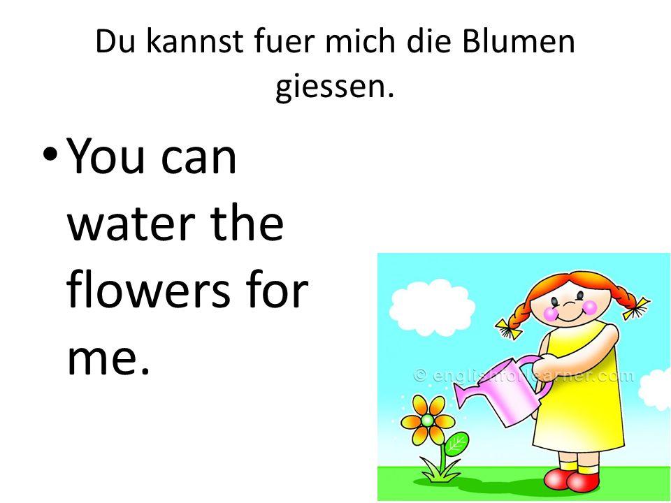 Du kannst fuer mich die Blumen giessen. You can water the flowers for me.