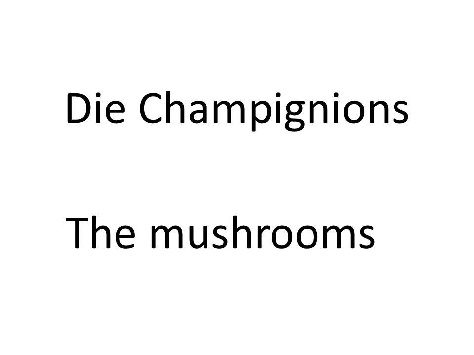 Die Champignions The mushrooms
