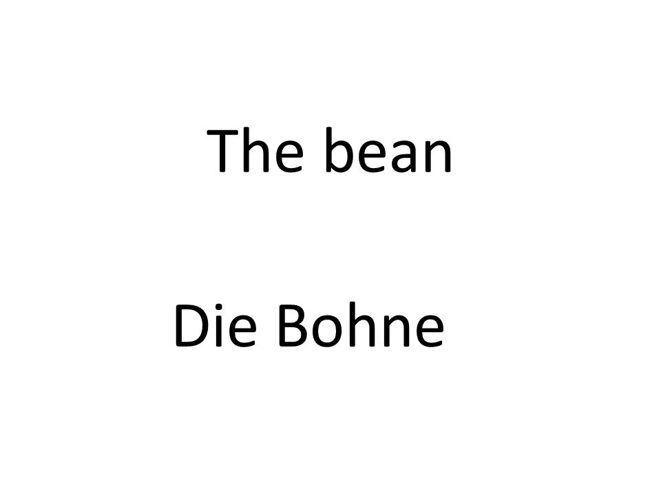 The bean Die Bohne