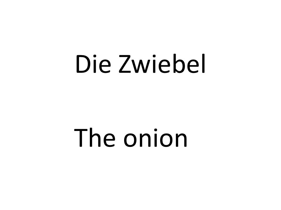 Die Zwiebel The onion