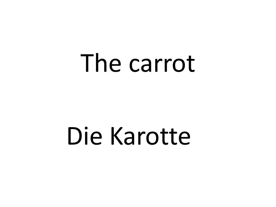 The carrot Die Karotte