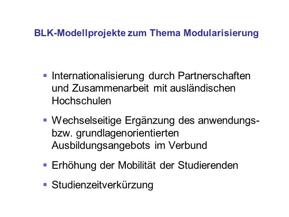 BLK-Modellprojekte zum Thema Modularisierung Internationalisierung durch Partnerschaften und Zusammenarbeit mit ausländischen Hochschulen Wechselseiti