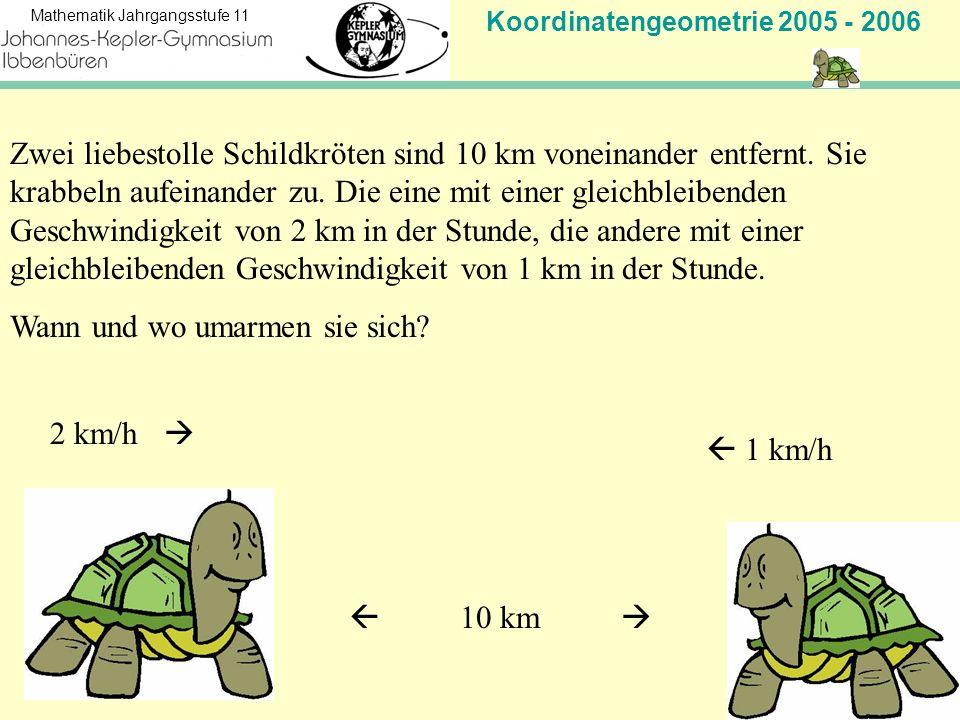 Koordinatengeometrie 2005 - 2006 Mathematik Jahrgangsstufe 11 Zwei liebestolle Schildkröten sind 10 km voneinander entfernt. Sie krabbeln aufeinander