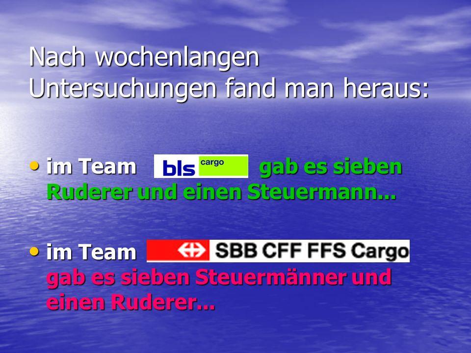 Das oberste Management engagierte sofort mehrere Beraterfirmen, die eine Studie über die Struktur des Teams anfertigen sollte.
