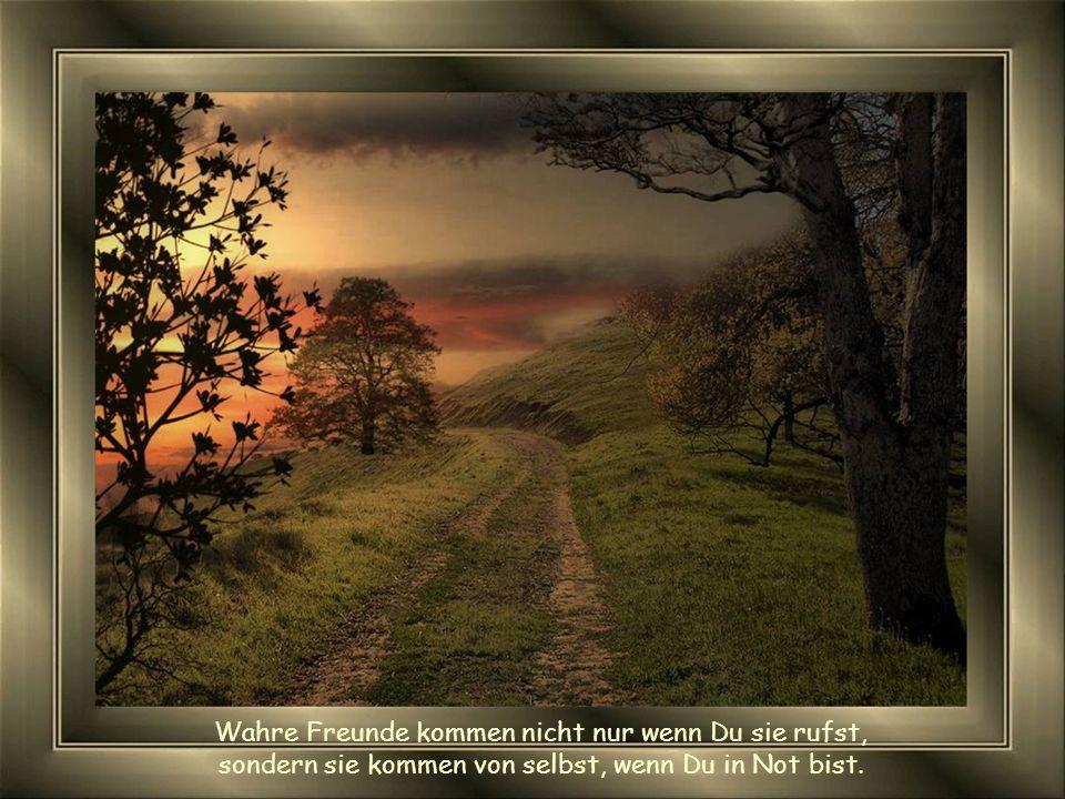 Menschen treten in Dein Leben aber nur wirkliche Freunde hinterlassen ihre Spuren.