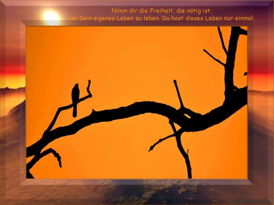 Dann soll Zuversicht in Dein Herz kommen und Stärke in Dir sein, um auch das Schwere gut und glücklich zu bestehen.
