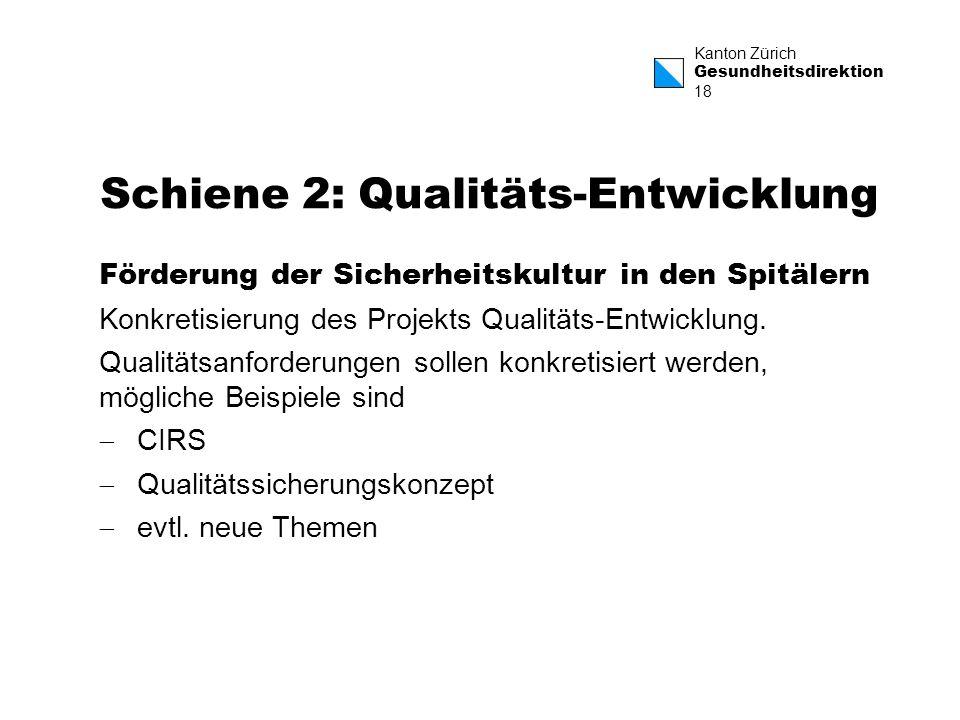 Kanton Zürich Gesundheitsdirektion 18 Schiene 2: Qualitäts-Entwicklung Förderung der Sicherheitskultur in den Spitälern Konkretisierung des Projekts Q