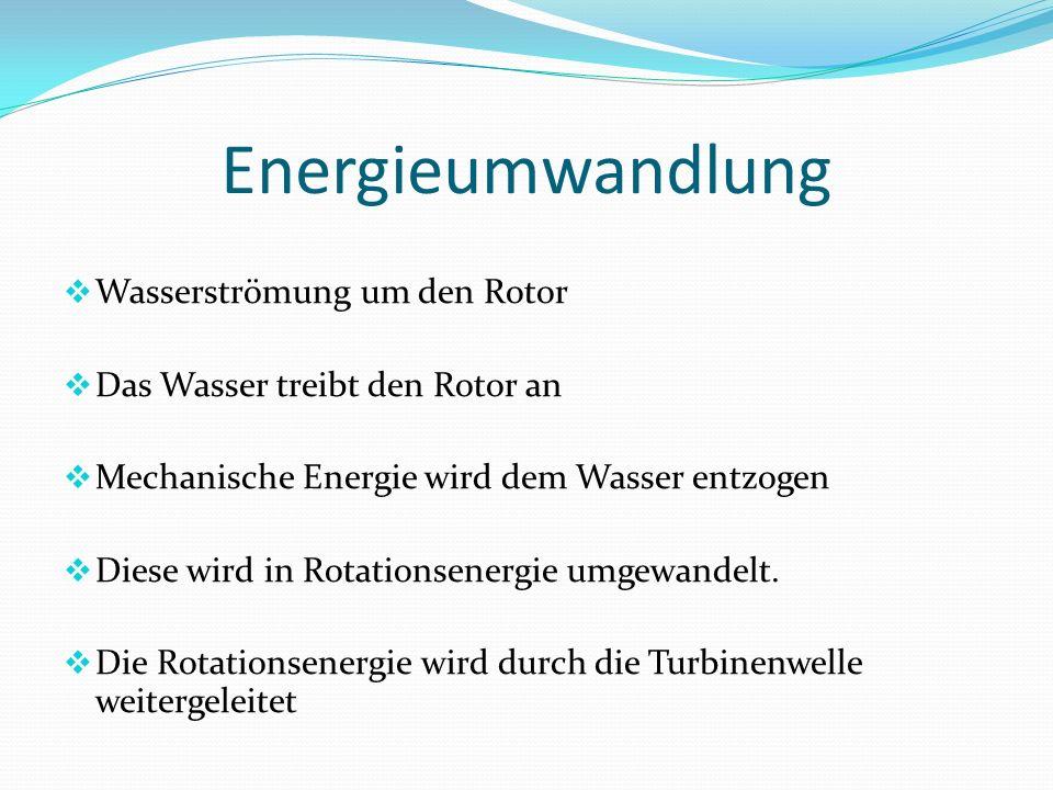 Aufbau Rotor Rotor Schaft Lagersatz Eingekapselte Generator http://www.voithhydro.com/media/t331_Ocean_Current_Technologies_72dpi.pdf