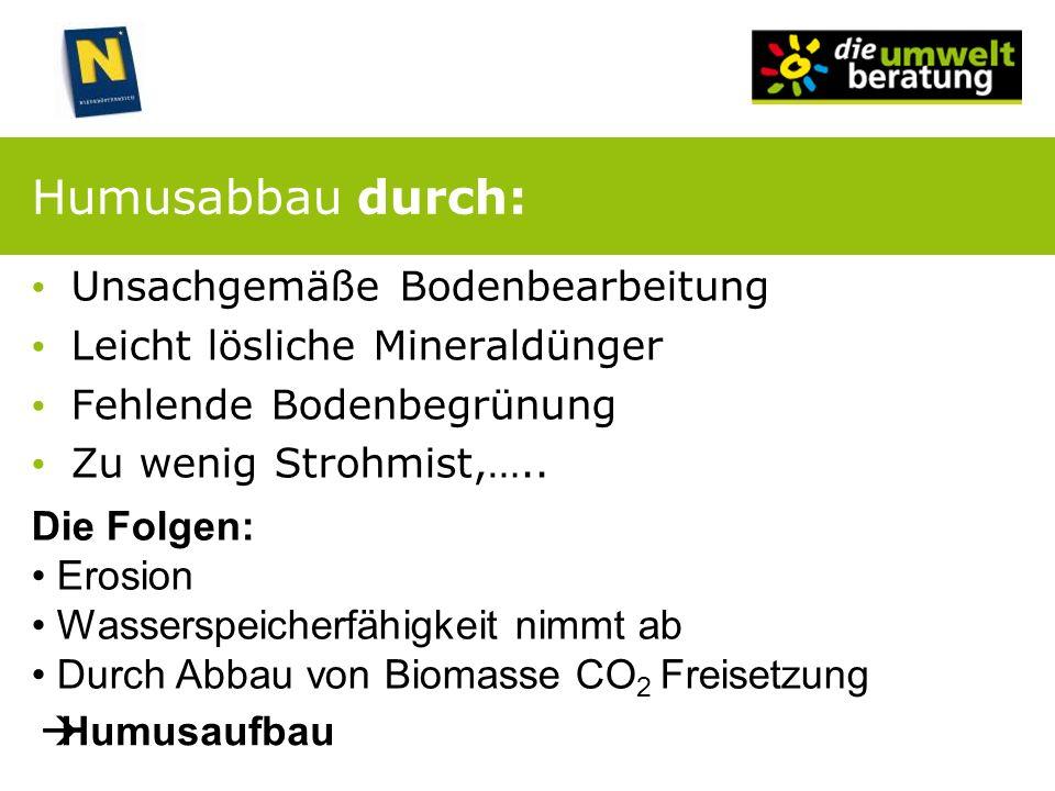 Humusabbau durch: Unsachgemäße Bodenbearbeitung Leicht lösliche Mineraldünger Fehlende Bodenbegrünung Zu wenig Strohmist,….. Die Folgen: Erosion Wasse
