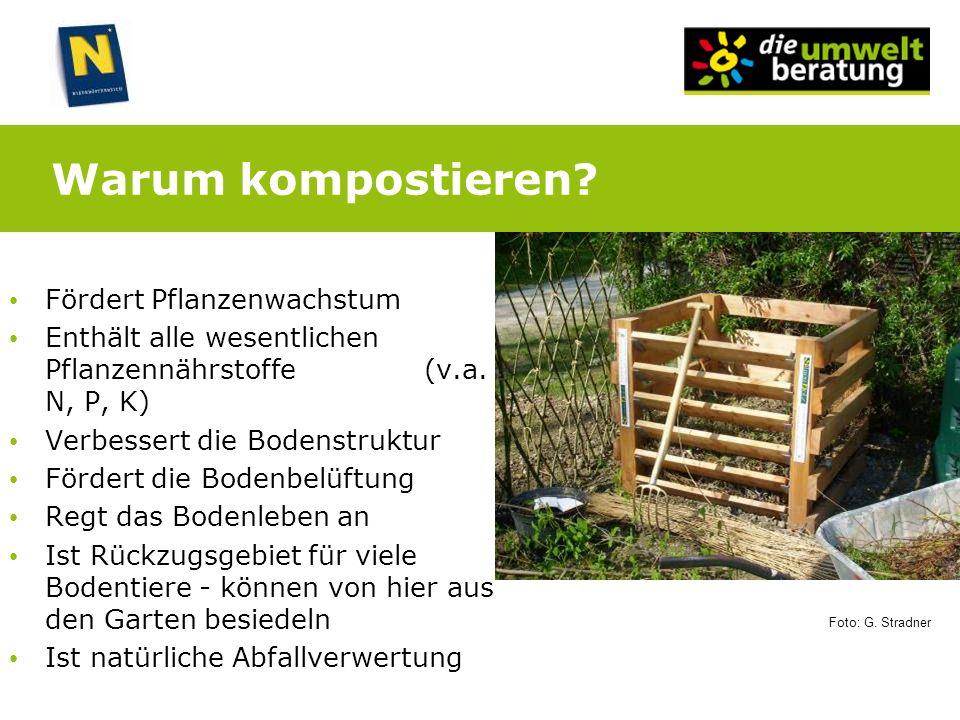 Warum kompostieren? Fördert Pflanzenwachstum Enthält alle wesentlichen Pflanzennährstoffe (v.a. N, P, K) Verbessert die Bodenstruktur Fördert die Bode