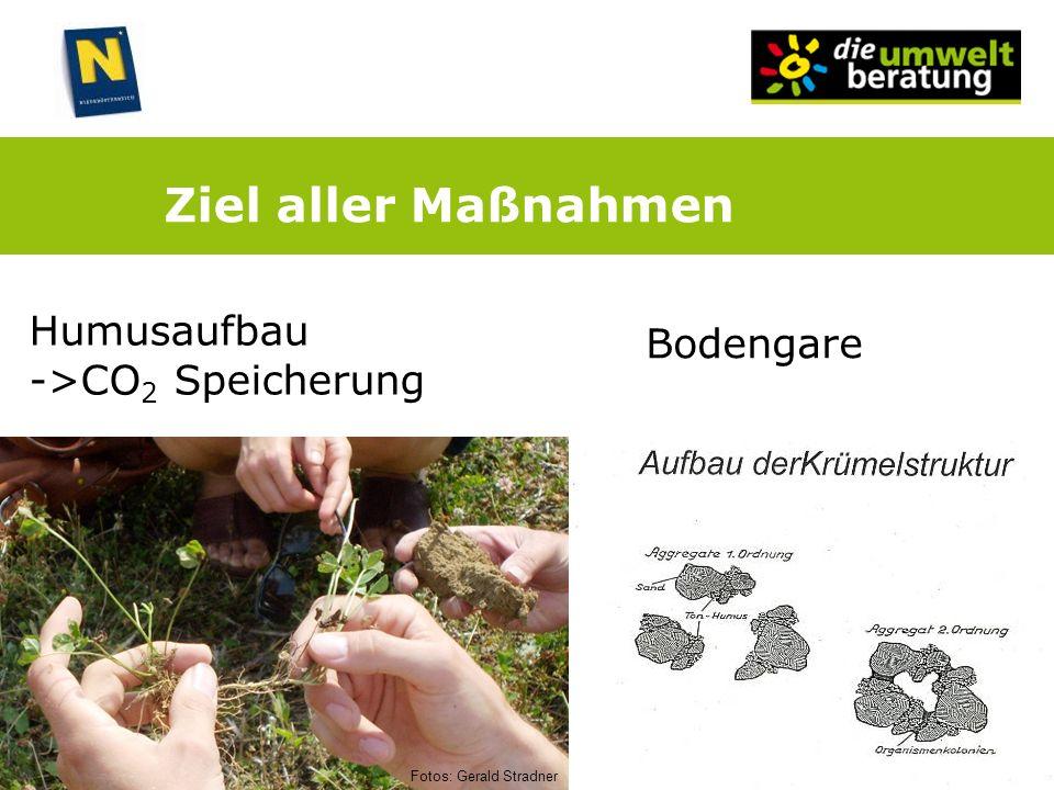 Ziel aller Maßnahmen Humusaufbau ->CO 2 Speicherung Bodengare Fotos: Gerald Stradner