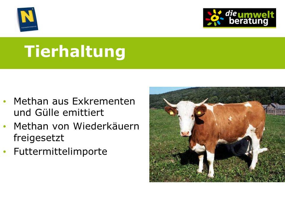 Tierhaltung Methan aus Exkrementen und Gülle emittiert Methan von Wiederkäuern freigesetzt Futtermittelimporte