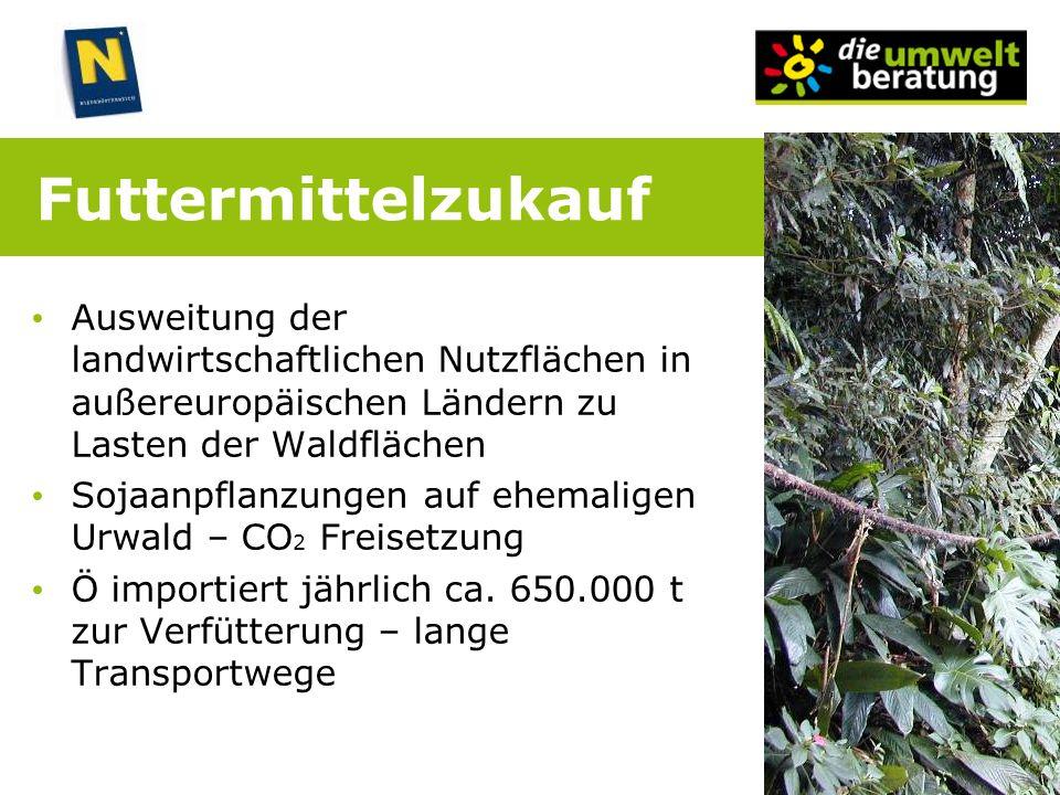 Futtermittelzukauf Ausweitung der landwirtschaftlichen Nutzflächen in außereuropäischen Ländern zu Lasten der Waldflächen Sojaanpflanzungen auf ehemal