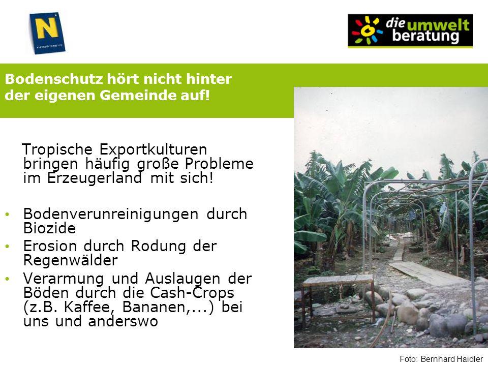 Bodenschutz hört nicht hinter der eigenen Gemeinde auf! Tropische Exportkulturen bringen häufig große Probleme im Erzeugerland mit sich! Bodenverunrei