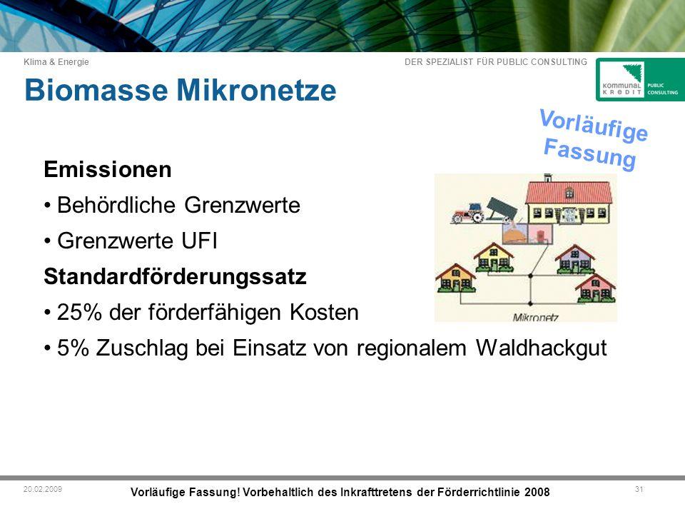 DER SPEZIALIST FÜR PUBLIC CONSULTING Klima & Energie 3120.02.2009 Biomasse Mikronetze Vorläufige Fassung.