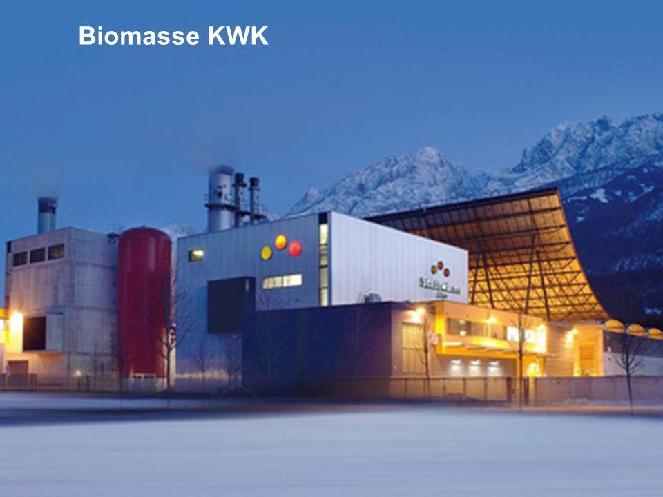DER SPEZIALIST FÜR PUBLIC CONSULTING Klima & Energie 3520.02.2009 Biomasse (1) Vorläufige Fassung.