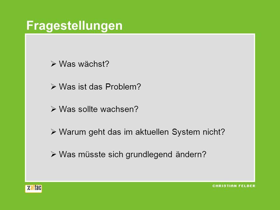 Fragestellungen Was wächst? Was ist das Problem? Was sollte wachsen? Warum geht das im aktuellen System nicht? Was müsste sich grundlegend ändern?