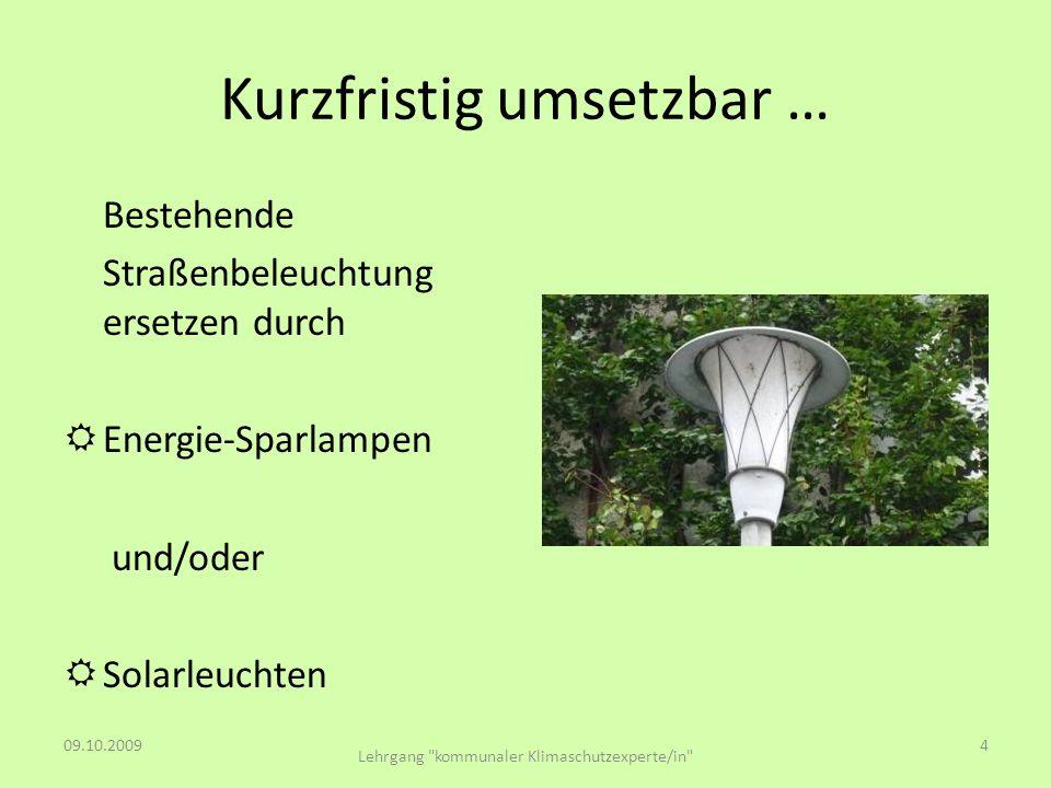 Kurzfristig umsetzbar … Bestehende Straßenbeleuchtung ersetzen durch Energie-Sparlampen und/oder Solarleuchten 09.10.20094 Lehrgang