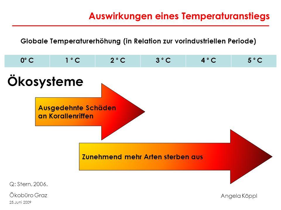 Angela Köppl Ökobüro Graz 25.Juni 2009 Auswirkungen eines Temperaturanstiegs Globale Temperaturerhöhung (in Relation zur vorindustriellen Periode) 0 ° C1 ° C2 ° C3 ° C4 ° C 5 ° C Ausgedehnte Schäden an Korallenriffen Zunehmend mehr Arten sterben aus Ökosysteme Q: Stern, 2006.