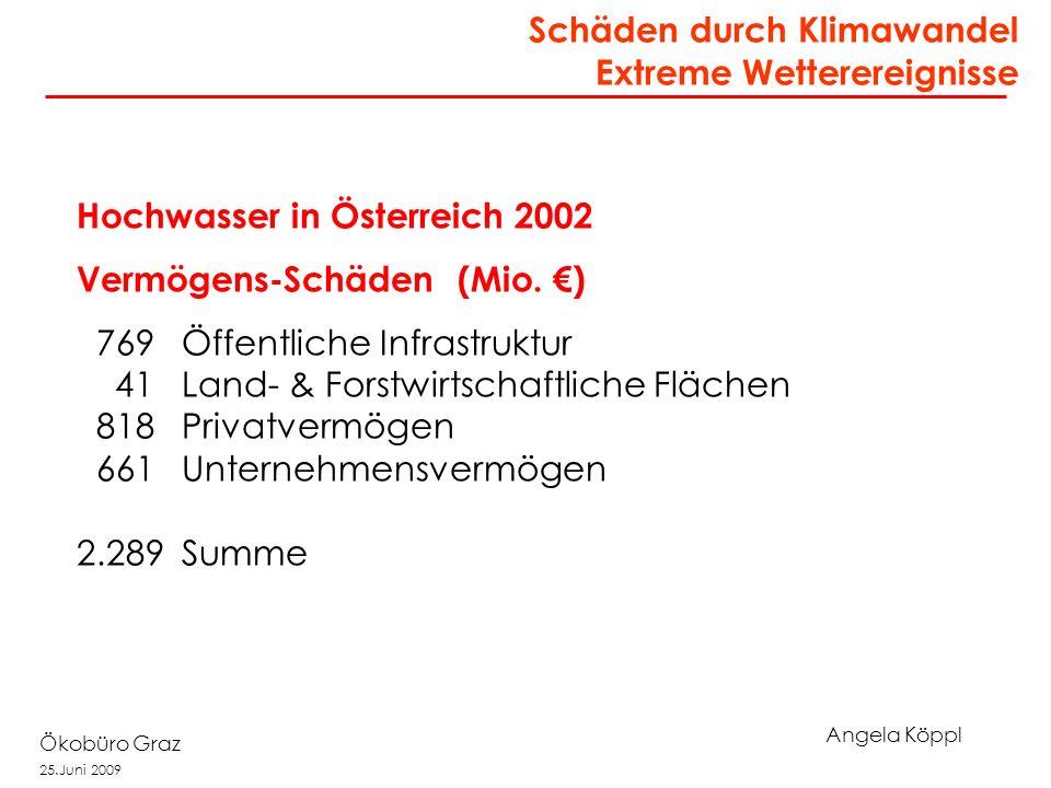 Angela Köppl Ökobüro Graz 25.Juni 2009 Schäden durch Klimawandel Extreme Wetterereignisse Mitterkirchen Hochwasser in Österreich 2002 Vermögens-Schäden (Mio.