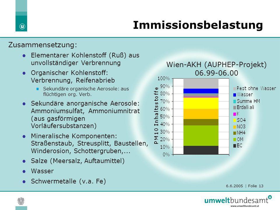 6.6.2005 | Folie 13 Immissionsbelastung Zusammensetzung: Elementarer Kohlenstoff (Ruß) aus unvollständiger Verbrennung Organischer Kohlenstoff: Verbre