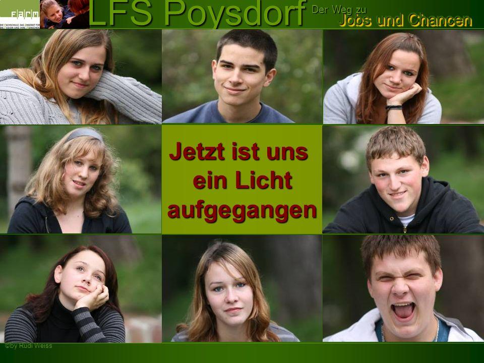 ©by Rudi Weiss Jobs und Chancen Der Weg zu LFS Poysdorf Jetzt ist uns ein Licht aufgegangen