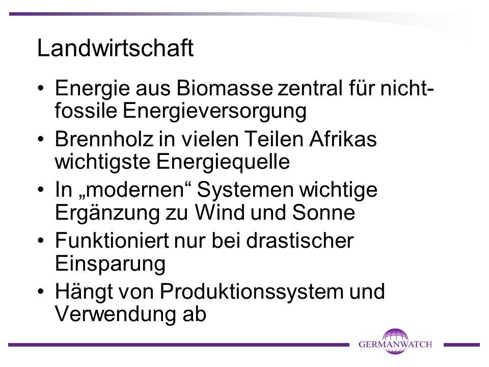 Landwirtschaft Energie aus Biomasse zentral für nicht- fossile Energieversorgung Brennholz in vielen Teilen Afrikas wichtigste Energiequelle In modern