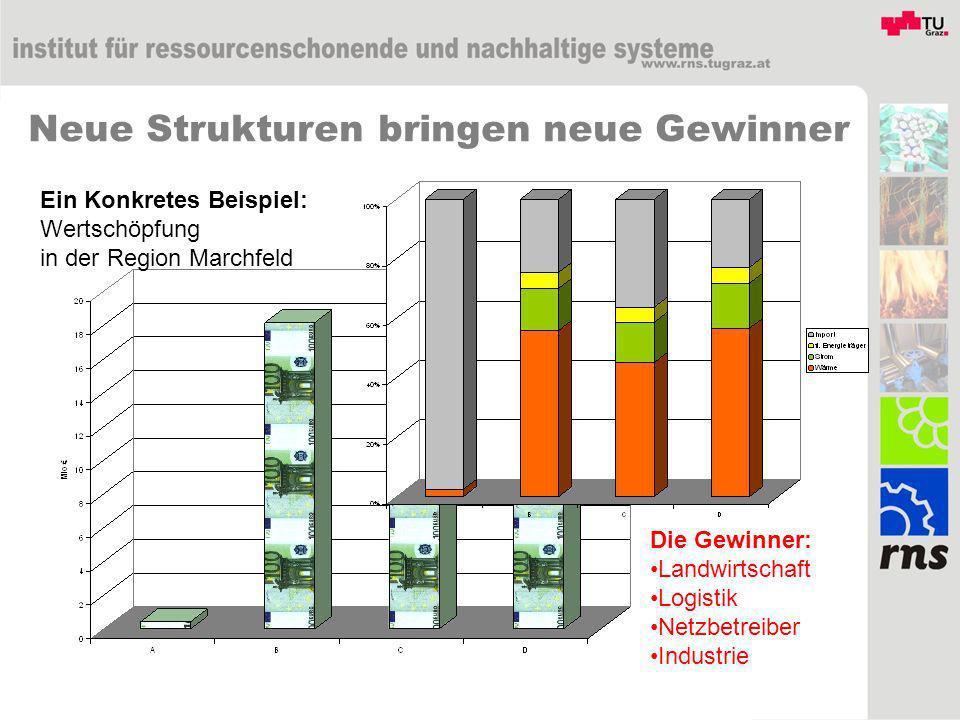 Neue Strukturen bringen neue Gewinner Ein Konkretes Beispiel: Wertschöpfung in der Region Marchfeld Die Gewinner: Landwirtschaft Logistik Netzbetreiber Industrie