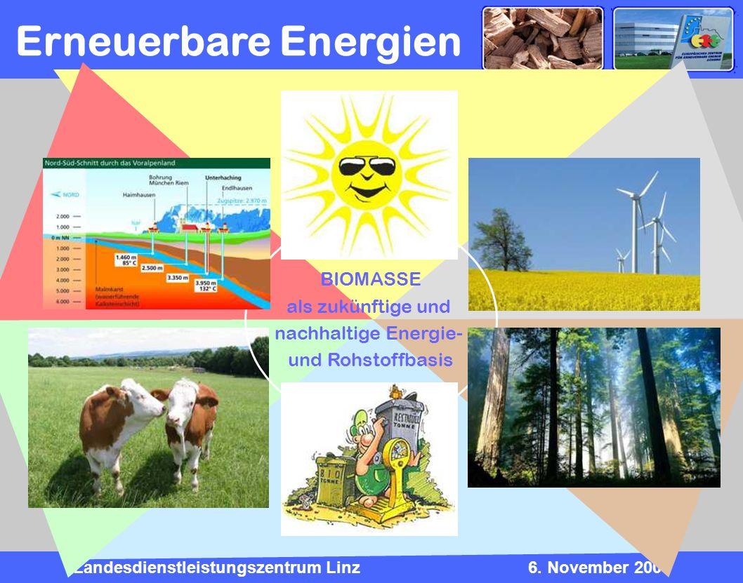 Landesdienstleistungszentrum Linz6. November 2009 Erneuerbare Energien BIOMASSE als zukünftige und nachhaltige Energie- und Rohstoffbasis