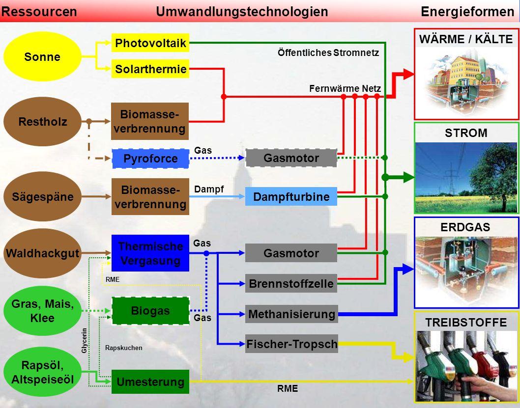 Landesdienstleistungszentrum Linz6. November 2009 Sonne Restholz Sägespäne RessourcenUmwandlungstechnologienEnergieformen Gras, Mais, Klee Rapsöl, Alt