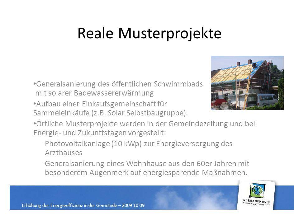Reale Musterprojekte Generalsanierung des öffentlichen Schwimmbads mit solarer Badewassererwärmung Aufbau einer Einkaufsgemeinschaft für Sammeleinkäufe (z.B.
