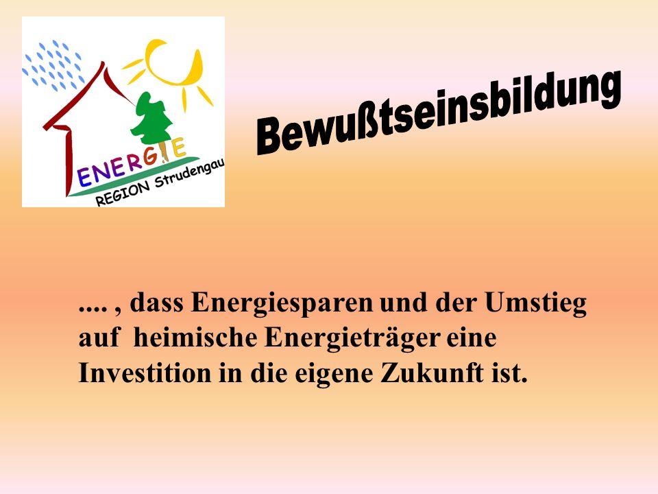 ...., dass Energiesparen und der Umstieg auf heimische Energieträger eine Investition in die eigene Zukunft ist.