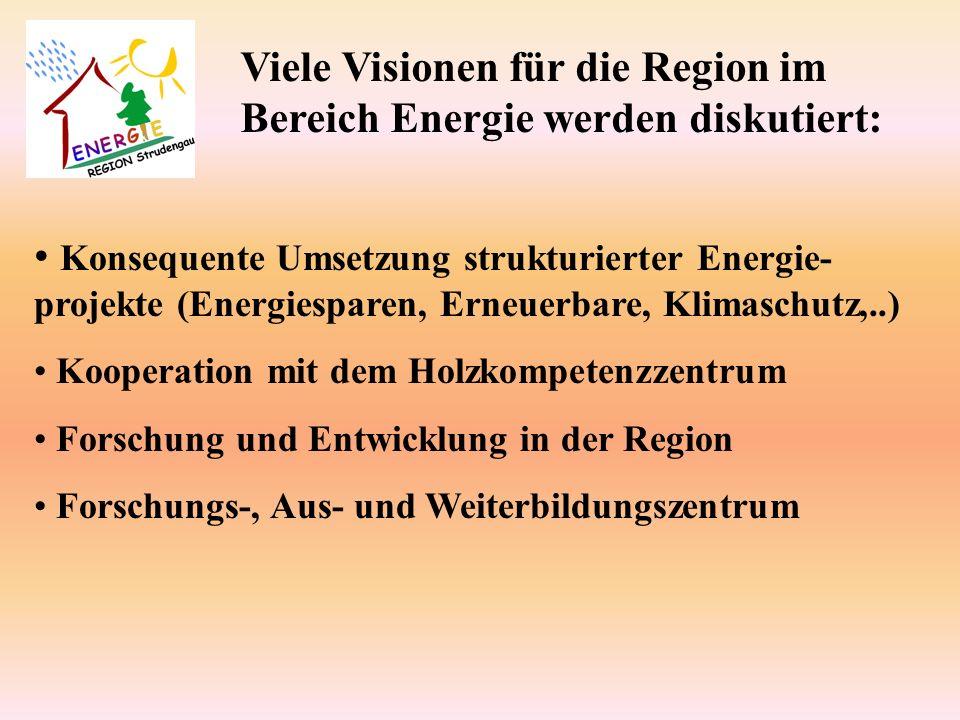 Konsequente Umsetzung strukturierter Energie- projekte (Energiesparen, Erneuerbare, Klimaschutz,..) Kooperation mit dem Holzkompetenzzentrum Forschung und Entwicklung in der Region Forschungs-, Aus- und Weiterbildungszentrum Viele Visionen für die Region im Bereich Energie werden diskutiert: