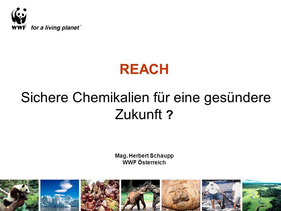 REACH Sichere Chemikalien für eine gesündere Zukunft ? Mag. Herbert Schaupp WWF Österreich