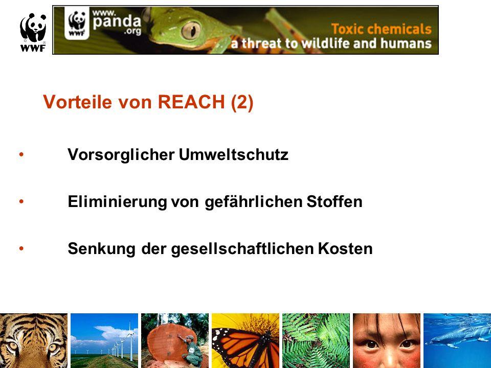 Vorteile von REACH (2) Vorsorglicher Umweltschutz Eliminierung von gefährlichen Stoffen Senkung der gesellschaftlichen Kosten