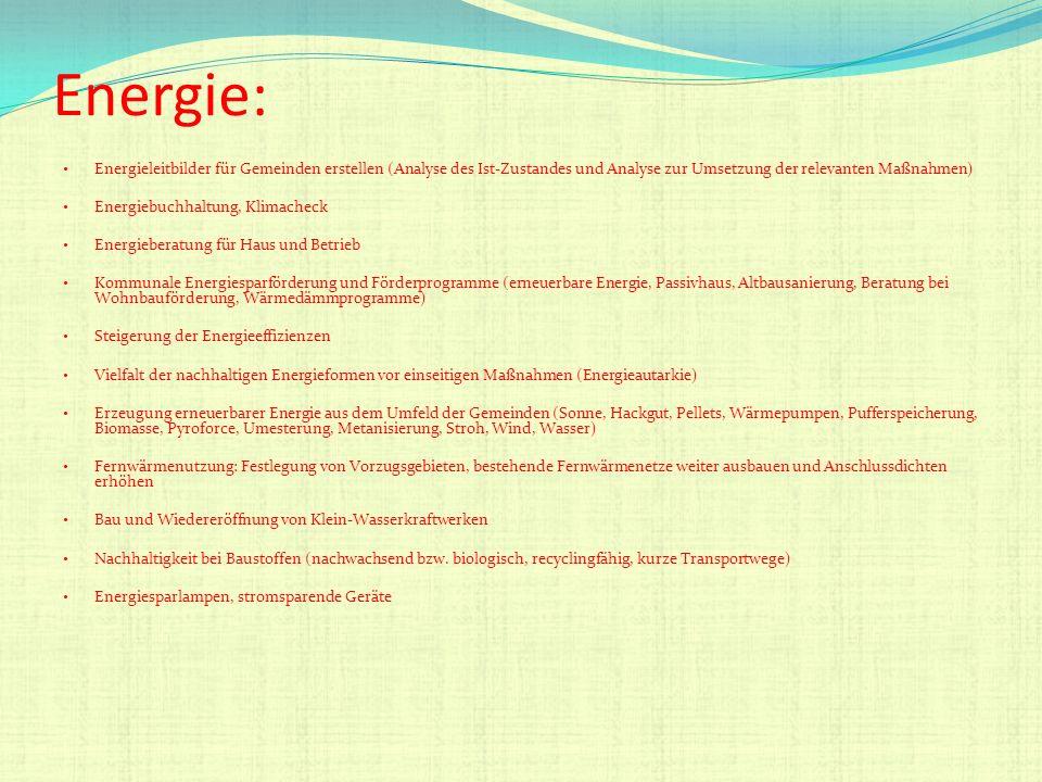 Energie: Energieleitbilder für Gemeinden erstellen (Analyse des Ist-Zustandes und Analyse zur Umsetzung der relevanten Maßnahmen) Energiebuchhaltung,
