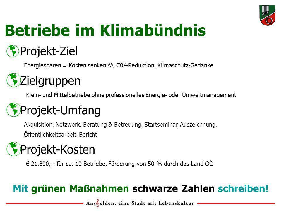 Projekt-Ziel Energiesparen = Kosten senken, C0²-Reduktion, Klimaschutz-Gedanke Zielgruppen Klein- und Mittelbetriebe ohne professionelles Energie- ode