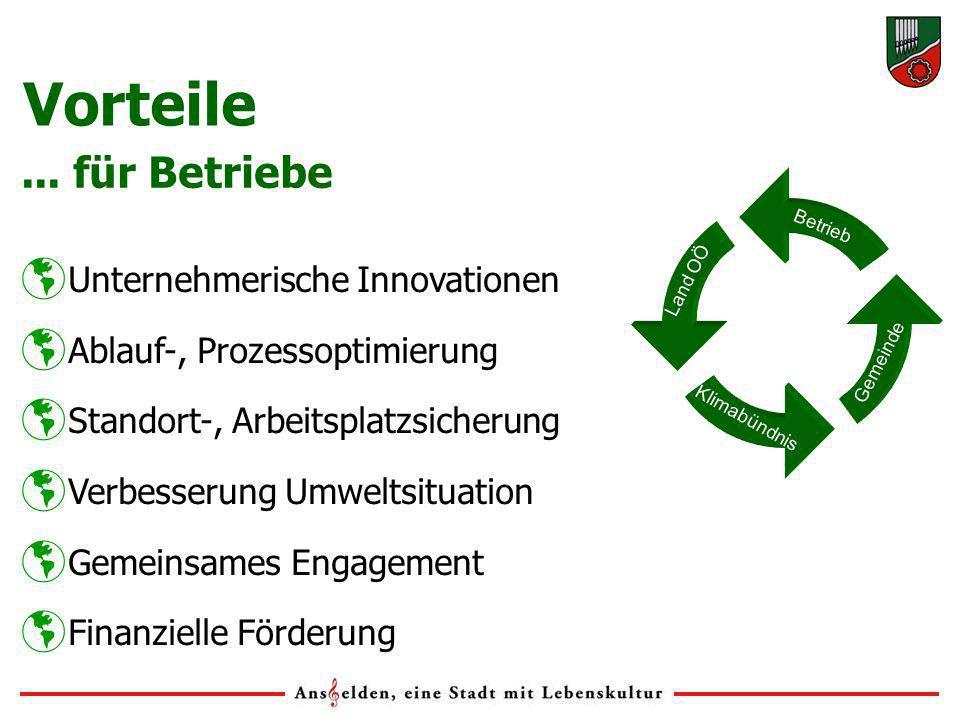 Unternehmerische Innovationen Ablauf-, Prozessoptimierung Standort-, Arbeitsplatzsicherung Verbesserung Umweltsituation Gemeinsames Engagement Finanzi