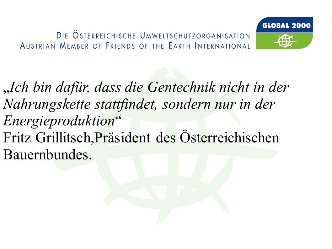 Ich bin dafür, dass die Gentechnik nicht in der Nahrungskette stattfindet, sondern nur in der Energieproduktion Fritz Grillitsch,Präsident des Österreichischen Bauernbundes.