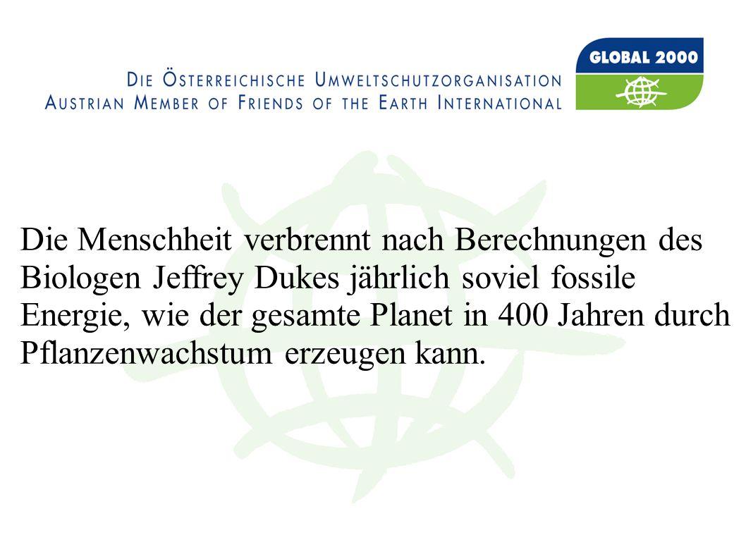 Die Menschheit verbrennt nach Berechnungen des Biologen Jeffrey Dukes jährlich soviel fossile Energie, wie der gesamte Planet in 400 Jahren durch Pflanzenwachstum erzeugen kann.