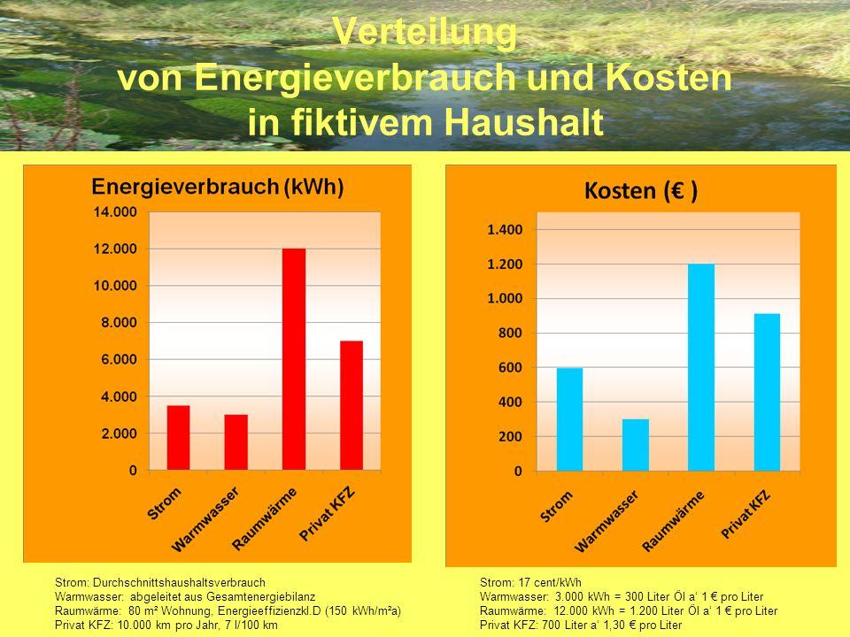 Verteilung von Energieverbrauch und Kosten in fiktivem Haushalt Strom: Durchschnittshaushaltsverbrauch Warmwasser: abgeleitet aus Gesamtenergiebilanz