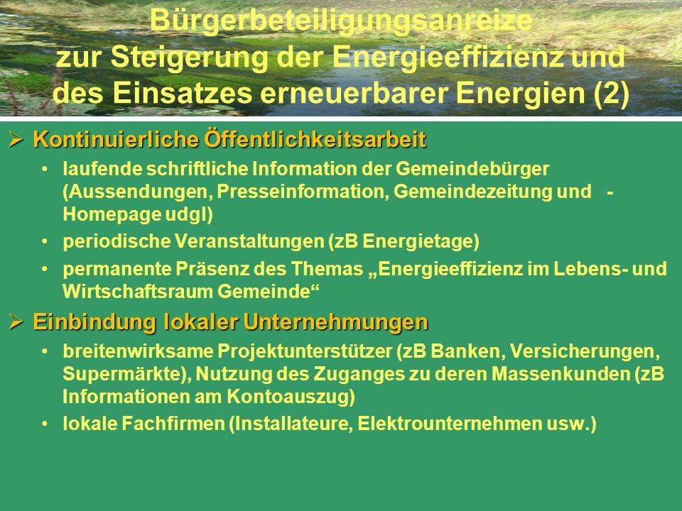 Bürgerbeteiligungsanreize zur Steigerung der Energieeffizienz und des Einsatzes erneuerbarer Energien (2) Kontinuierliche Öffentlichkeitsarbeit Kontin