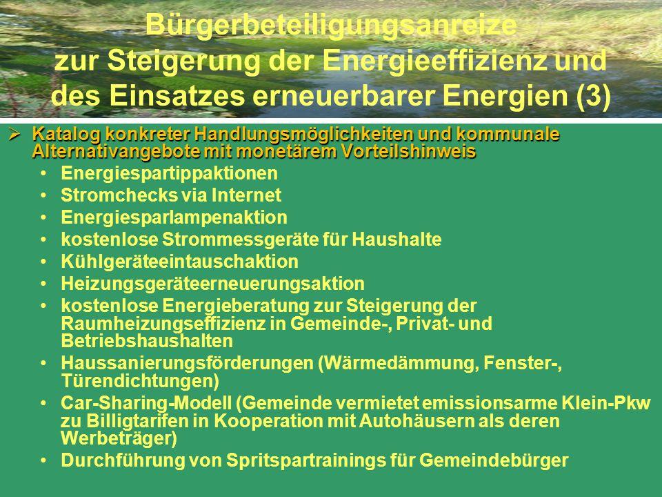 Bürgerbeteiligungsanreize zur Steigerung der Energieeffizienz und des Einsatzes erneuerbarer Energien (3) Katalog konkreter Handlungsmöglichkeiten und