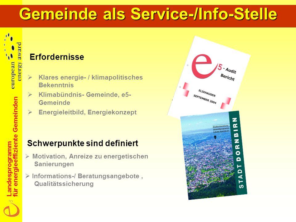 Landesprogramm für energieeffiziente Gemeinden Energiedatenerhebung in der Gemeinde Gebäude- und Beheizungsstruktur Beispiel St.
