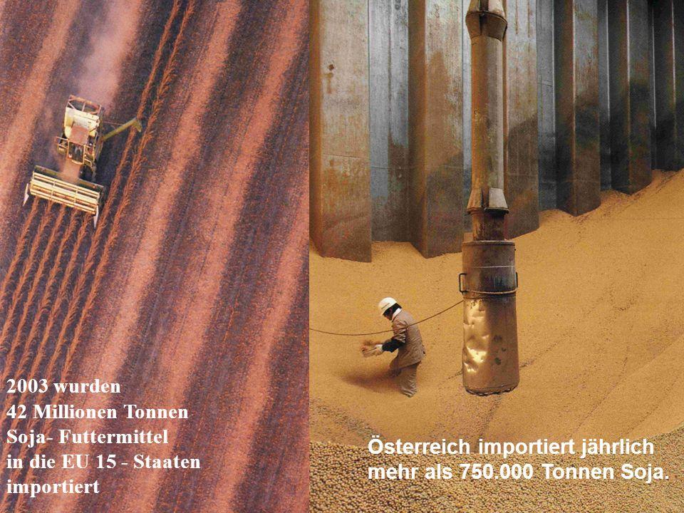 2003 wurden 42 Millionen Tonnen Soja- Futtermittel in die EU 15 - Staaten importiert.
