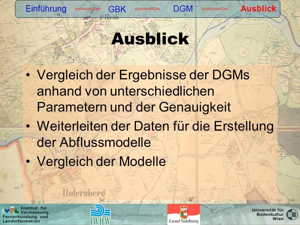 Vergleich der Ergebnisse der DGMs anhand von unterschiedlichen Parametern und der Genauigkeit Weiterleiten der Daten für die Erstellung der Abflussmodelle Vergleich der Modelle Einführung GBK DGMAusblick