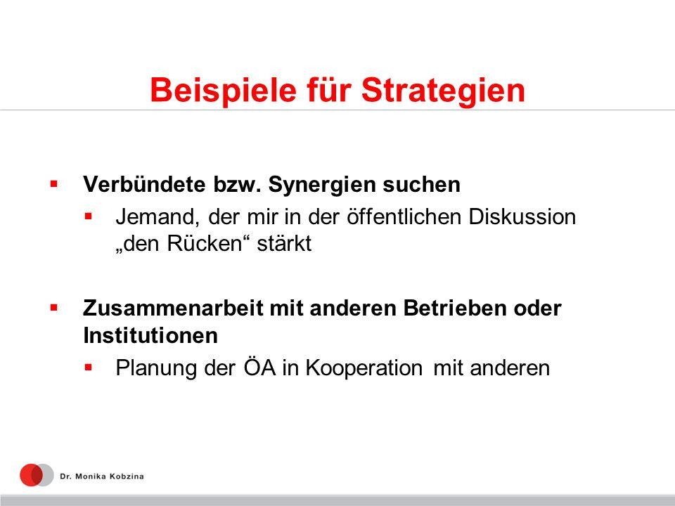 Beispiele für Strategien Verbündete bzw. Synergien suchen Jemand, der mir in der öffentlichen Diskussion den Rücken stärkt Zusammenarbeit mit anderen